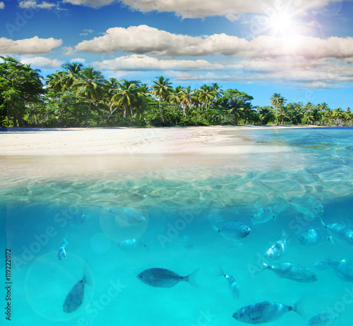 Photo Stands Turquoise Entspannung, Freude, Auszeit, Glück: Tauchen im Meer bei karibischer Trauminsel :)