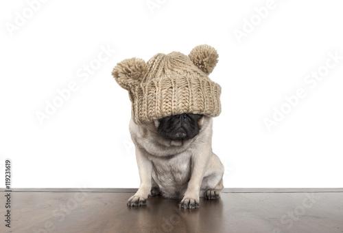 Aluminium Prints Dog schattige mops hond pup met gebreide muts over ogen, op witte achtergrond