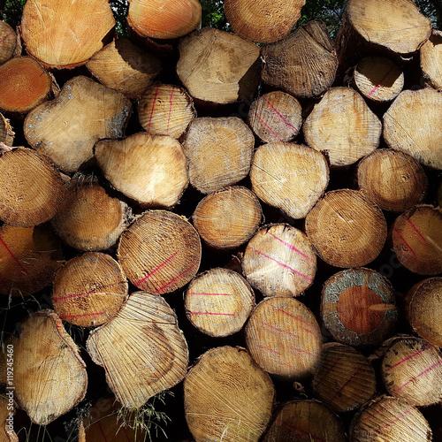 Recess Fitting Firewood texture Holzstapel, Brennholz, Fichtenstaemme