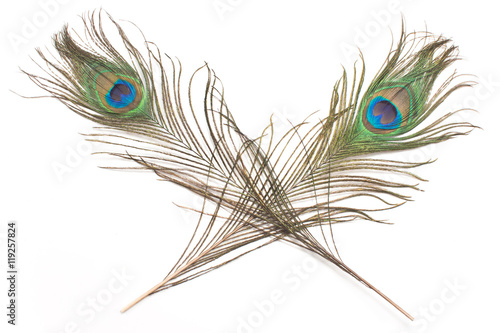 Foto op Aluminium Pauw Two peacock feathers isolated on white