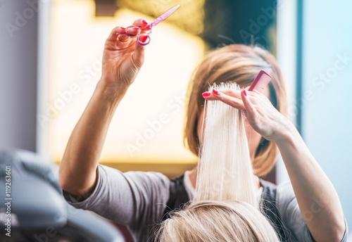 Fotografie, Obraz  Professional Hair Styling