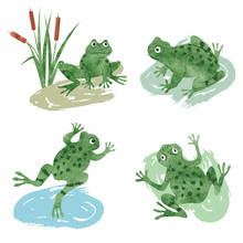 Set Of Cute Watercolor Frogs I...