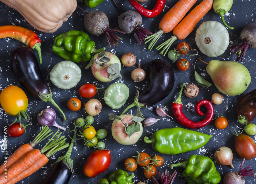 Autumn vegetable harvest. Assortment of vegetables - pumpkin, eggplant, peppers, carrots, tomatoes, onions, garlic, beets on a dark background, top view.