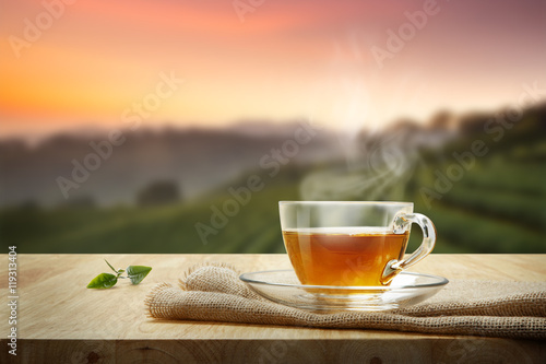 Warm cup of tea and tea leaf on wooden table with the tea planta