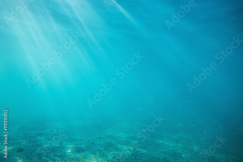 Underwater shot with sunrays and fish in deep tropical sea