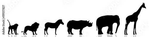 Photo  Vector illustration wild animals.