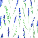 Seamless pattern with watercolor lavender - 119319062