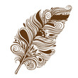 Vector brown feather