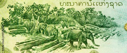 Montage in der Fensternische Huhn Currancy banknote of Asia