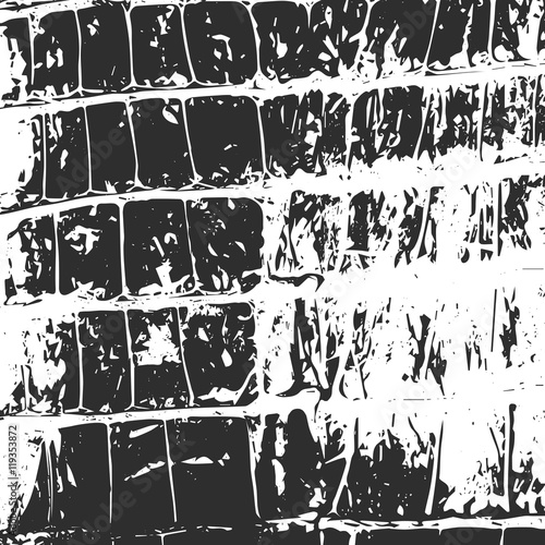 Photo  Crocodile leather, abstract texture black on white. Vector