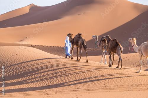 Fotografija  Morocco, Erg Chegaga is a Saharan sand dune (c