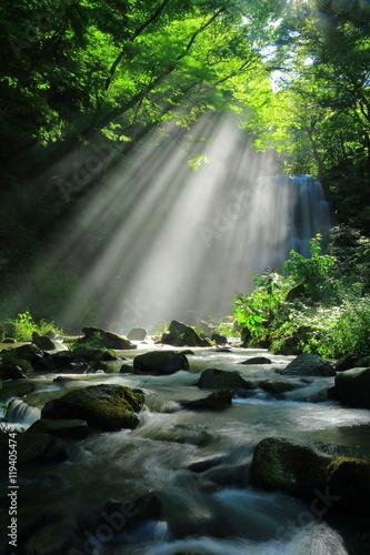 Foto op Canvas Watervallen 秋田県 亀田不動滝の光芒