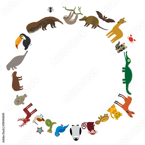 Sloth Anteater Toucan Lama Bat Seal Armadillo Boa Manatee Monkey Dolphin Maned Wolf Rac Jaguar Hyacinth Macaw Lizard Turtle Crocodile Deer Penguin