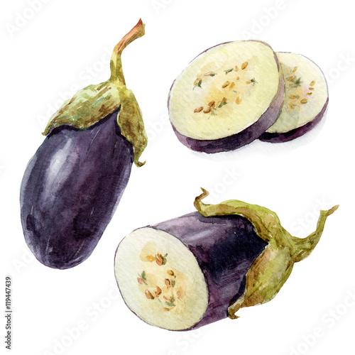 Photo  Watercolor hand drawn eggplant
