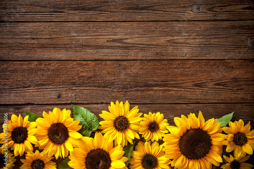 Obraz na plátně Sunflowers on wooden background