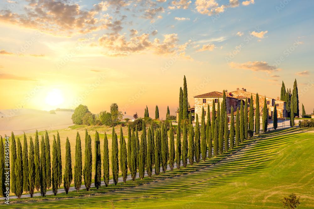 Fototapety, obrazy: Toskania o zachodzie słońca - wiejska droga z drzewami i domem