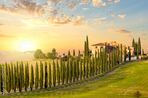 Photo sur Toile Toscane Tuscany at sundown - countryside road with trees and house