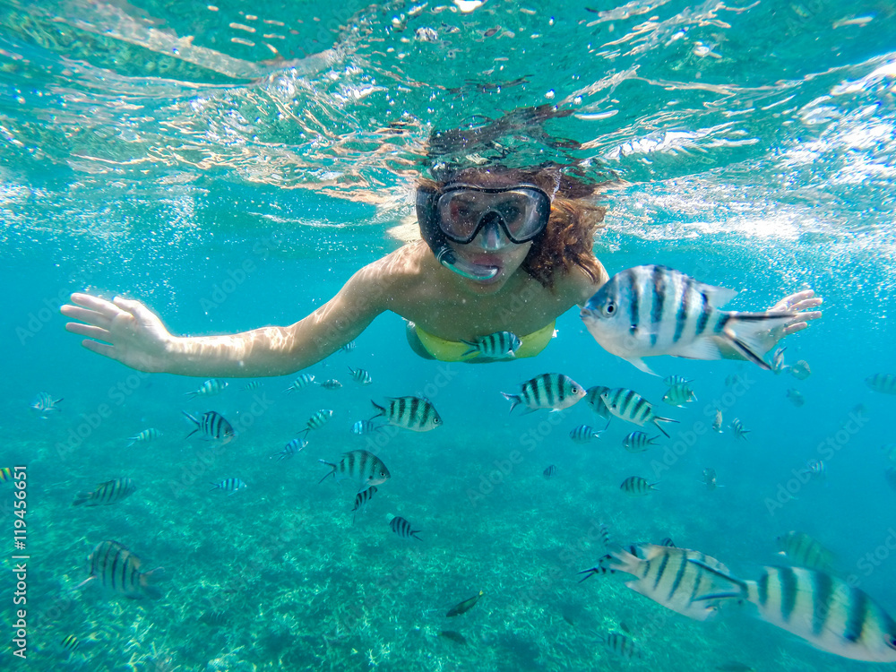 Fototapeta Young woman snorkeling with the fishes in sea of Malaysia