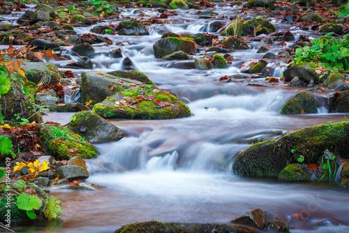 Fototapeta blue water of mountain stream in autumn time