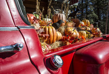 Large, Colorful Fall Display Of Pumpkins And Gourds On Bales Of Hay In The Back Of A Red, Vintage Pick-up Truck