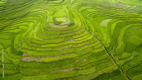 Fotobehang Rijstvelden Beautiful Rice Terraces from above in Thanh Hoa, Vietnam