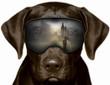 Czarny pies w Londynie, fotomontaż