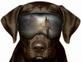 Fototapeta London - Czarny pies w Londynie, fotomontaż