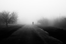 Wayfarer In Fog. Silhouette Of...