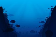 Vector Illustration Of Sea Lif...