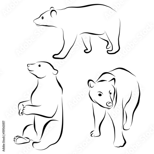 Photo  vector set of bear silhouettes isolated on white background