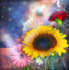 Obraz Girasole,garofano e fiori tropicali sotto un cielo stellato con la luna piena