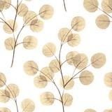 Gałęzie z okrągłymi liśćmi. Tle akwarela Wzór 6 - 119587492
