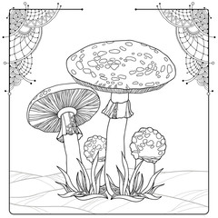 Vector composition with Amanita or Fly agaric mushroom isolated on white. Outline poisonous red-cup mushroom in line art decor. Floral elements in contour style for autumn design and coloring book.