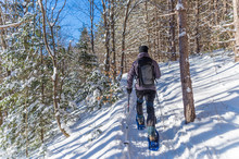 Young Man Snowshoeing In Winter,  In The Quebec Eastern Townships
