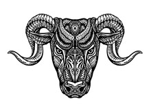 Hand Drawn Head Ram. Ethnic Patterns. Bull Or Animal Icon. Vector Illustration