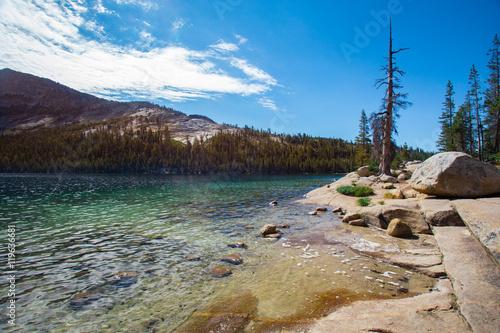Fotomural  Parque Nacional de Yosemite vista del lago Tenaya a lo largo del paso Tioga