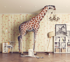 Fototapetagiraffe in the living room