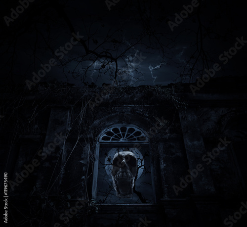 Wall Murals Cemetery Human skull blend with dead tree over old ancient window castle,