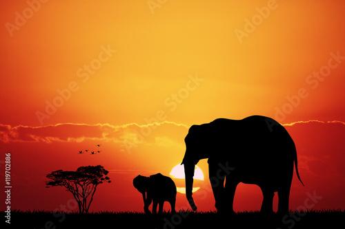 Poster Marron chocolat elephants in African landscape