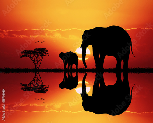 Keuken foto achterwand Rood traf. elephants in African landscape at sunset