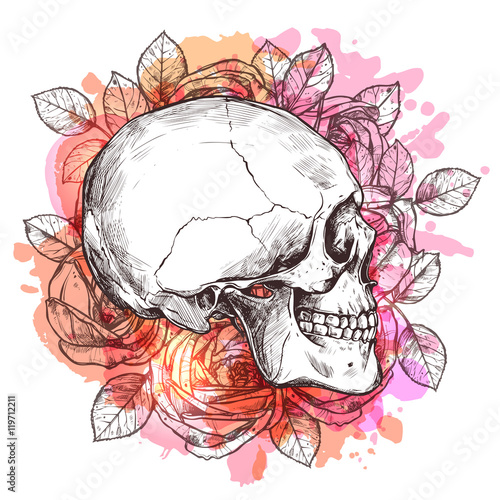 Foto auf Leinwand Aquarell Schädel Skull And Flowers. Hand Drawn Sketch With Watercolor Effect