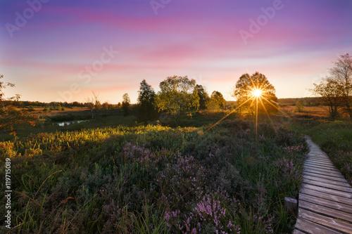 Sunset in high fens - coucher de soleil dans les Hautes Fagnes Canvas-taulu