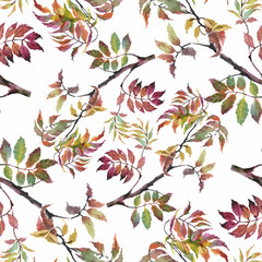 Naklejka Do sypialni Watercolor seamless pattern on white background with autumn leaves.