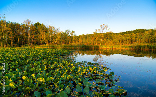 Fotografie, Obraz Beaver Marsh in Cuyahoga Valley National Park between Cleveland and Akron