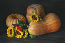 Autumn Still Life. Pumpkins And Sunflowers On A Dark Wooden Background.