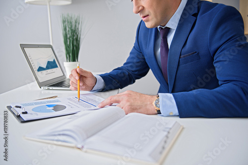 Garden Poster Adult businessman working in office