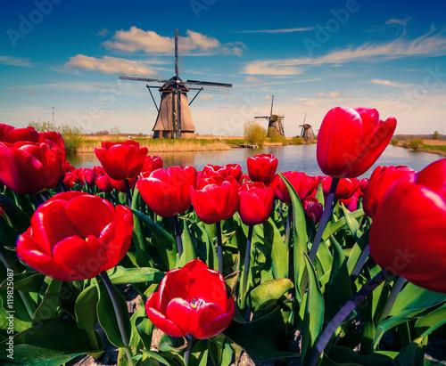 slynne-holenderskie-wiatraki
