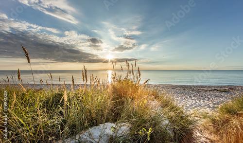 Obraz Dzikia plaża - fototapety do salonu