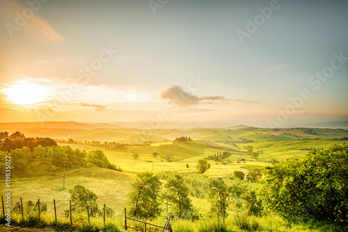 Poster Miel Beautiful tuscan landscape view in Val dOrcia region near Pienza town on the morning in Italy. Wide angle photo with copy space