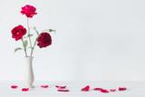 still life of red rose in vase